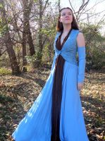 The Margaery Tyrell Costume by taylor-of-the-phunk