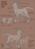 Arcanus feral anatomy guide by Velkss