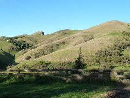 Te Mata Peak 10 by raindroppe