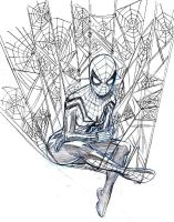 SPIDER-GIRL by Wieringo
