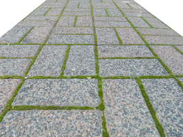 Mossy Bricks 003 - HB593200 by hb593200