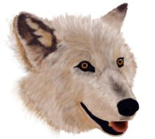 Wolf by airf0rce0ne