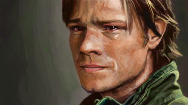 3x16 paint by padfoot2012