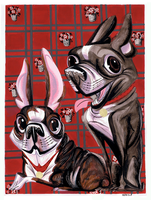 Boston Terriers by Pocketowl
