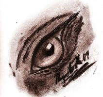 . : Animal Eye in Charcoal : . by Wolfbeauty