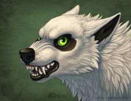 Drayok Bust by Shadow-Wolf