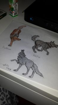 some wolves I drew by LordAresWar