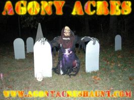 Agony Acres Haunt by efawjedi
