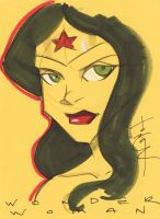 Wonder Woman by Tom Hodges by danmartin26