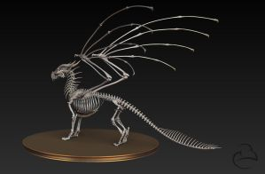 Misc - Dragon skeleton 2 by Peet-B