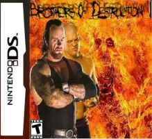 Brothers of Destruction DS by ZhaneAugustine