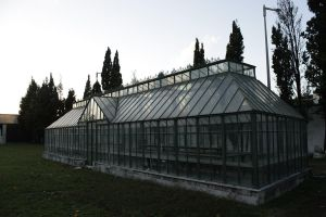 Glass greenhouse by Valadj