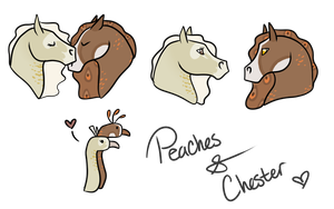 Peaches x Chester Breeding by gyngercookie