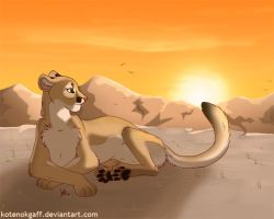 Lonely cougar by kotenokgaff