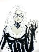 Black Cat Heroes 2011 by JediDad