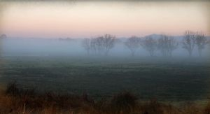 Misty morning at Kempsey by CouchyCreature