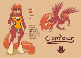 Contour Reference by Sparva