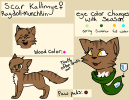 Scar ref sheet September 2013 by Meowmixed