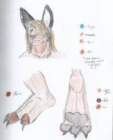 Head and Paws for NicktheRoo by NicktheRoo
