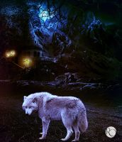 Wolf by IgnisSouls