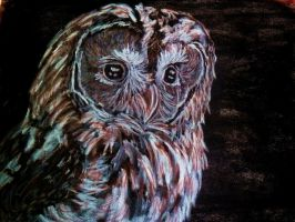 Charcoal owl by DadaGirl87