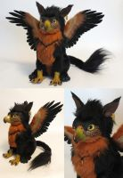 Amber Gryphon by kimrhodes