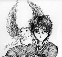 Harry and Hedwig by Yiji