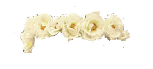 White Flower Crown PNG by halo-2fab4u-styles