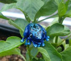 Blue Poison Dart Frog Pendant by CaterpillarArts