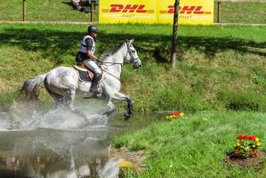 3DE Eventing Stock Water Combination Water by LuDa-Stock