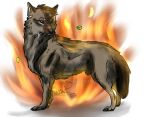 .:Commission:. Fire wolf by BlueWolfieART