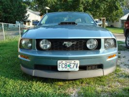 2007 with shaker hood scoop and spoiler by Davidk1960