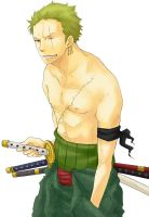 Zoro - New World by Mcgooen