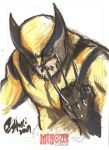 Wolverine by Oshouki by TheSleeperAwakes