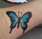 Butterfly Project by Brunni87