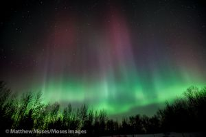 Saint Patrick's Day Aurora by MosesImages