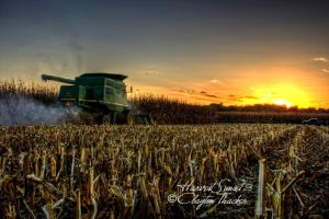 Harvest Sunset 3 by cthacker