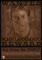 Help Nathan Wanted Poster by catbones