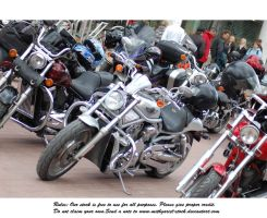 bikes gathering (6) by Mithgariel-stock