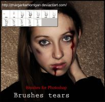 brushes tears by margarita-morrigan