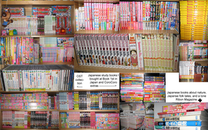 Manga Collection Jan'10 by Redlinks