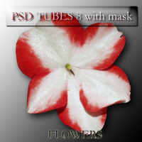 psd flowers 8 with mask by feniksas4