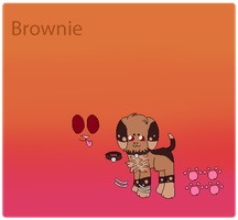 New Character - Brownie by chocoIate