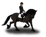 Publics Choice Show Gilly Dressage by angry-horse-for-life