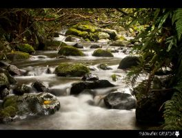 Lindsay creek 4 by shadowfoxcreative