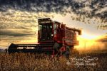 Harvest Sunset 9 by cthacker