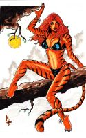 Tigra by montrosity