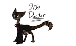 9th Doctor Kitty by theWolfdragon21