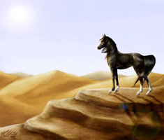 Goodbye Desert by Faejala