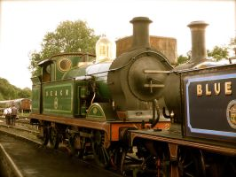 263 and Bluebell by SteamRailwayCompany